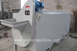 Walnut sorting machine
